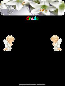 credo-228x300